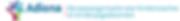 Logo-Adiona-2.png
