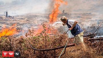 Desperate attempts to halt flames at Cape wine farms