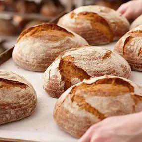 Índice glicêmico: qual a importância dele na nossa alimentação?