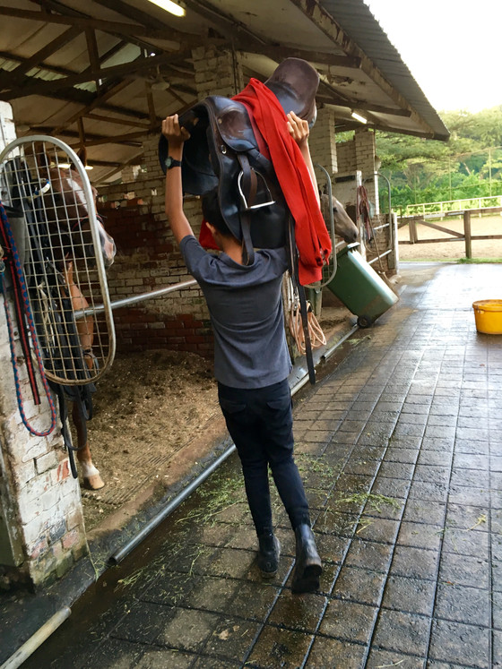 This is me working at the Singapore Polo Club stables