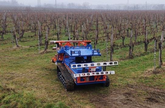 At High-Tech Wineries, Robots Prune Vines and Precision Sensors Analyze Disease