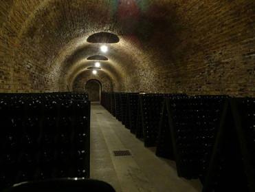 Bollinger cellars