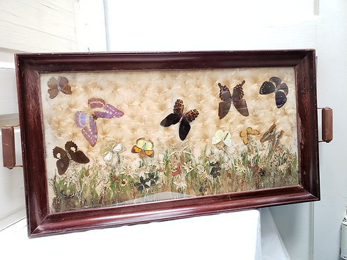 Antique Pressed Butterfly & Flowers Tray