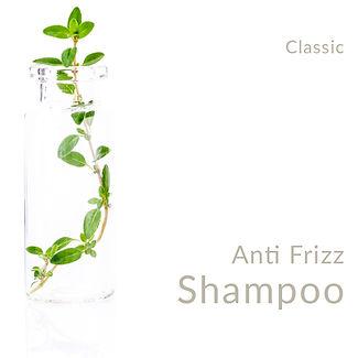 Anti Frizz Shampoo_Classic.jpg