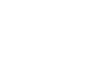 Firewire Performance & Offroad logo.