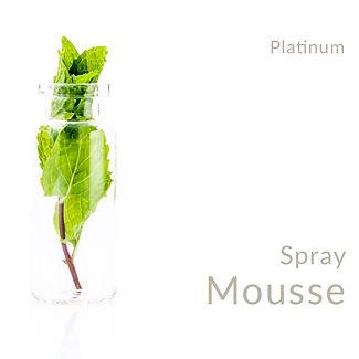 Spray Mousse_Platinum.jpg