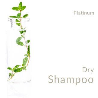 Dry Shampoo_Platinum.jpg