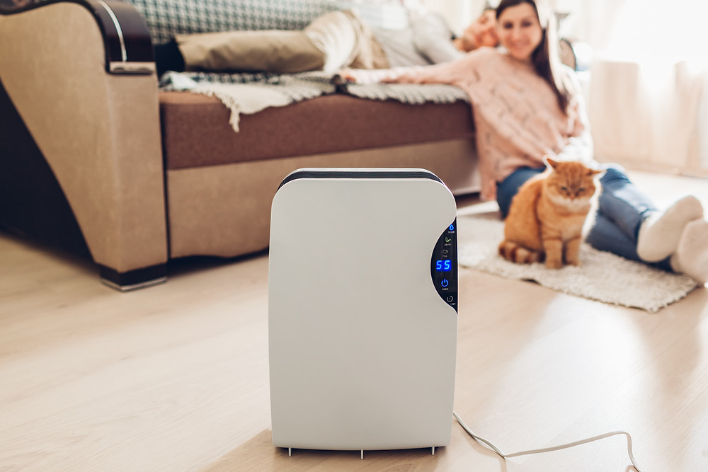 BENEFITS OF USING DEHUMIDIFIERS