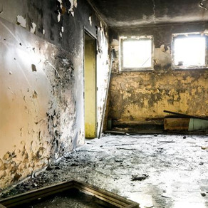 4 FAQ'S ABOUT MOLD