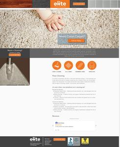 Elite Steamer Carpet Cleaner