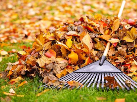 MORE FALL PREP TIPS