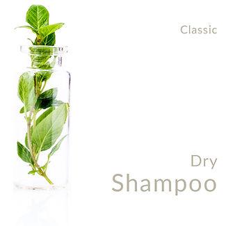 DryShampoo_Classic.jpg