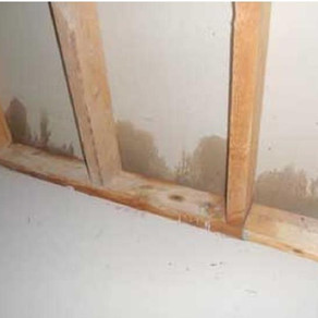 REMOVING MOISTURE FROM DRYWALL