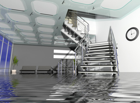 BUSINESS FLOODED? HERE IS WHAT TO DO