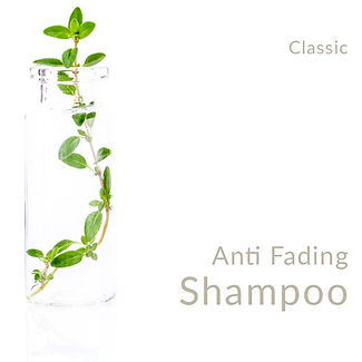Anti Fading Shampoo_Classic.jpg