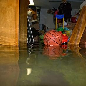 LANDSCAPING TIPS TO PREVENT BASEMENT FLOODS