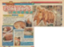 1999年4月5日 蘋果日報.jpg