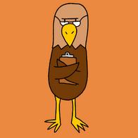 Principal Hawk
