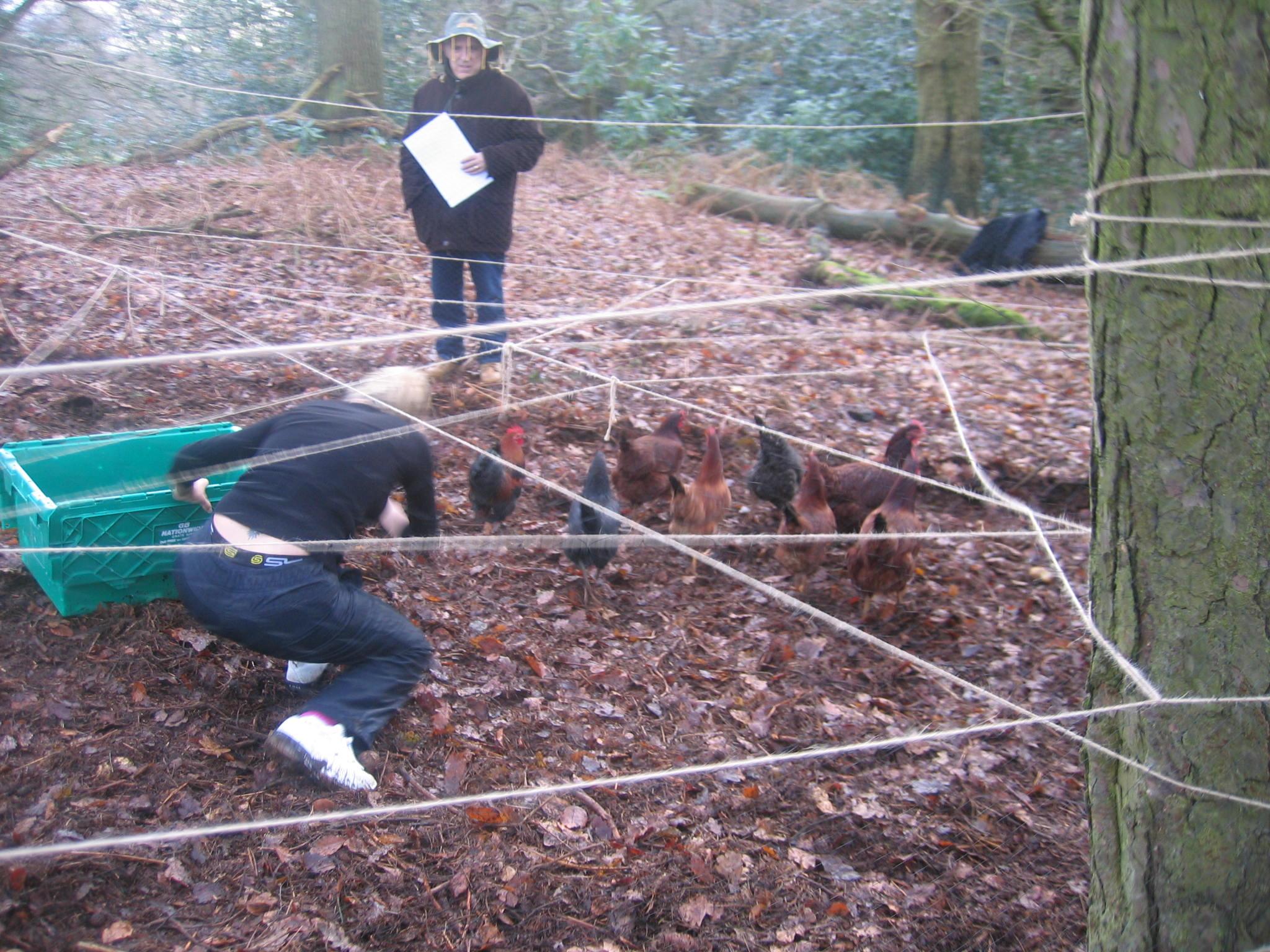 Fun teamwork challenges Devon