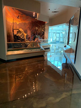 RIOCOAT Metallic Tech H2O Coeducational Center El Paso TX July 2019 03.jpg