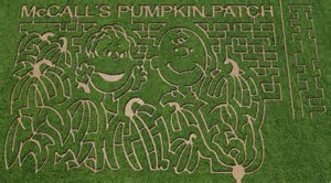 McCall's Pumpkin Patch in Moriarty
