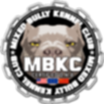 logo drapeaux world mbkc