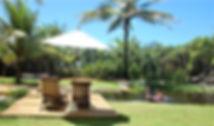 natural organic swimming pool