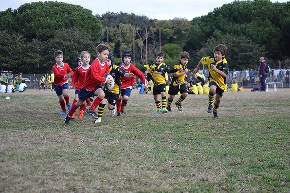 Lions Pomezia RugbyClub