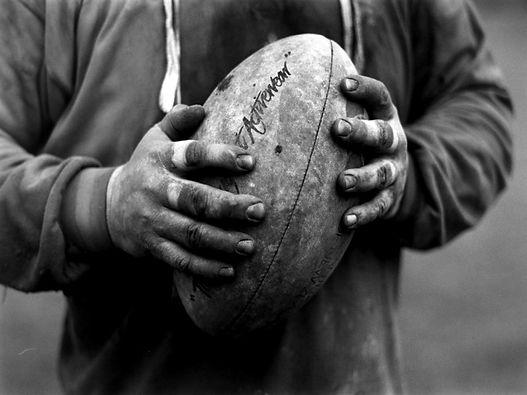 Lions Pomezia Rugby Club