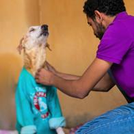 Vet Assistant Ahmed Taking care of Destiny Senior Patient