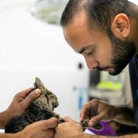 Dr. Youssef Nagui