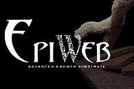 EpiWeb is an eco-friendly substitute for tree fern