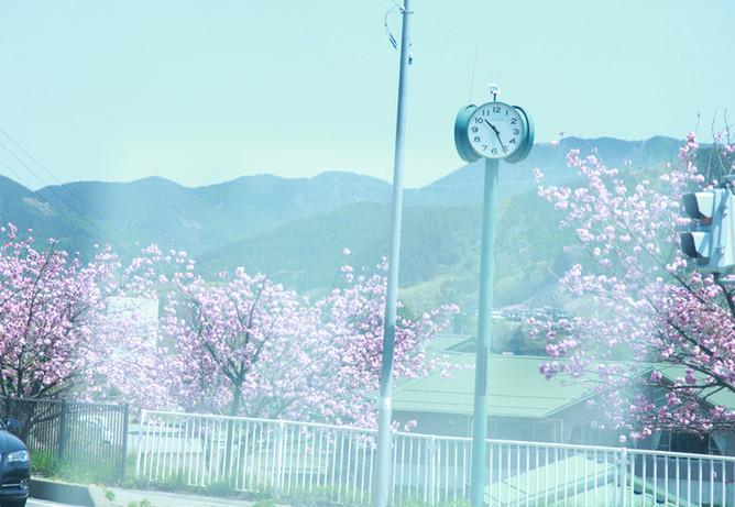 may.2015 yamanashi