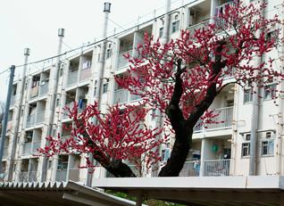 mar.2016 tokyo