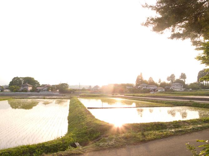 may,2014 yamanashi