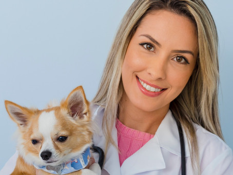 Conheça a Dra. Claudia!