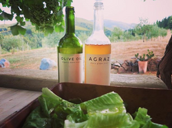 olive oil and agraz from the farm