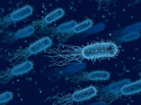 MIT AI-designed Antibiotic does not develop resistance