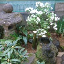 和風の庭02