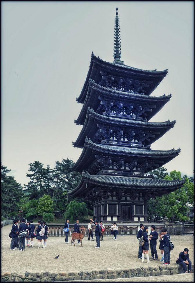 Nara Pagode 5 étages