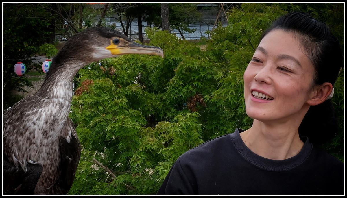 Uji cormoran