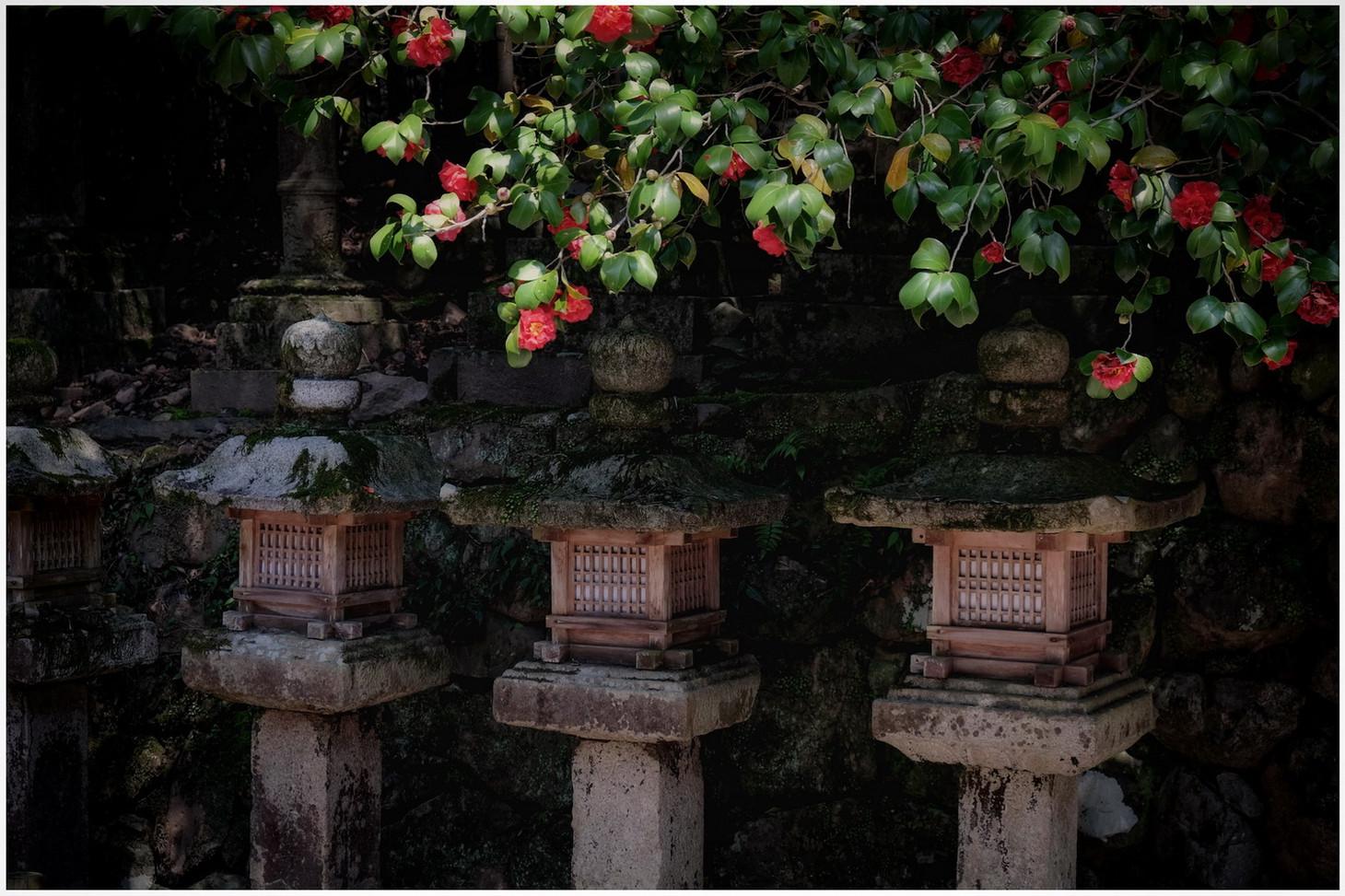 Temple des lanternes