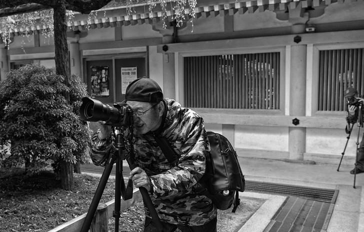 Photographes amateur mais sérieux à Nara