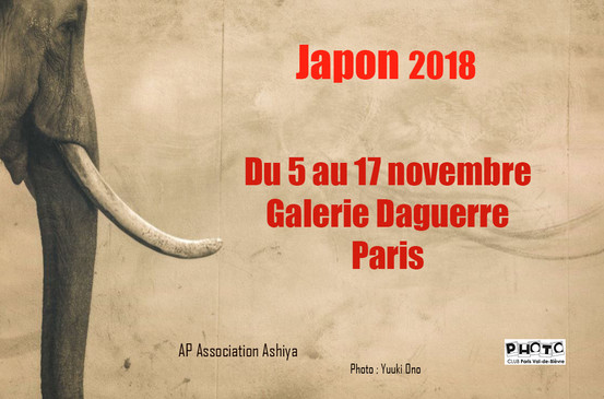 Galerie Daguerre