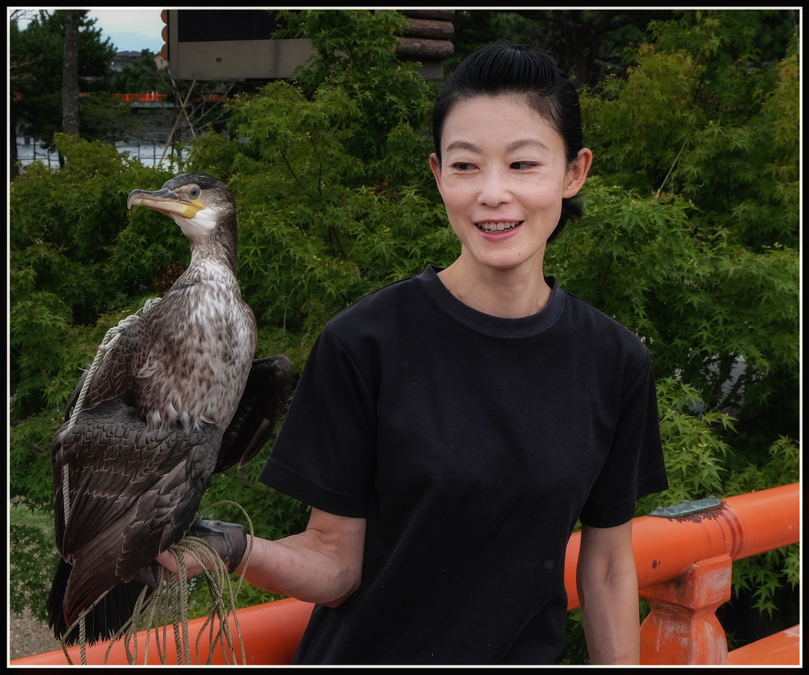 Uji cormoran et sa dresseuse