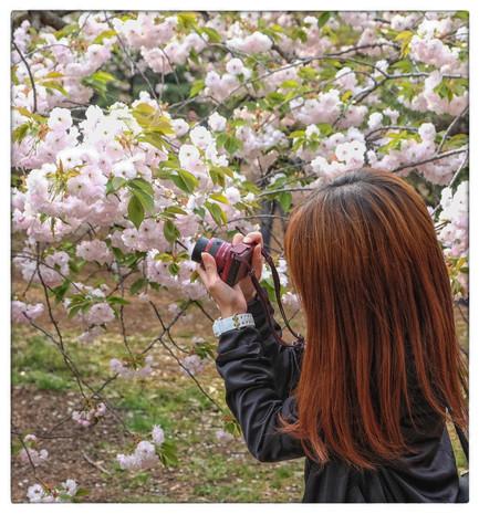 Avril 2014 Japon_-717_redimensionner.jpg