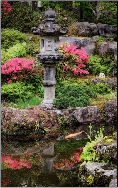 Carpe à Nikko