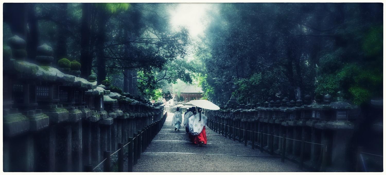 Nara sous la pluie