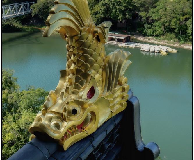 Château Noir dragon