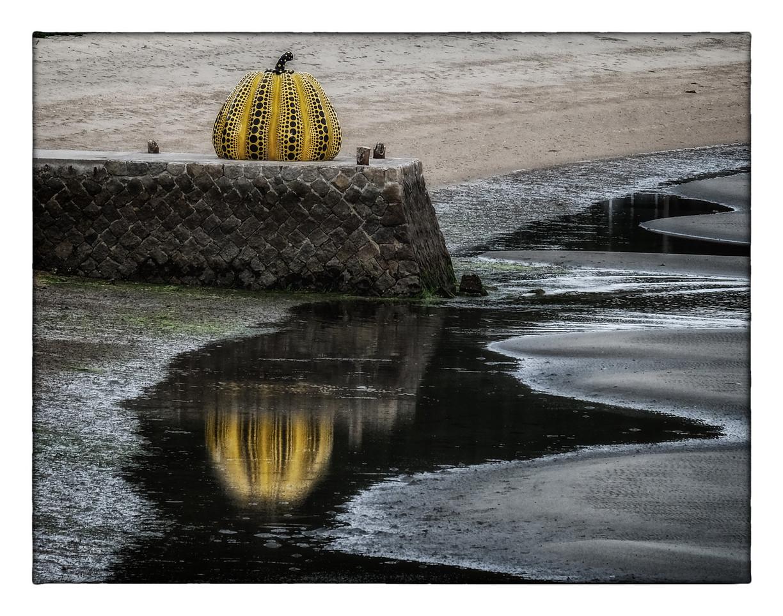 Célébre poire Yellow Pumpkin